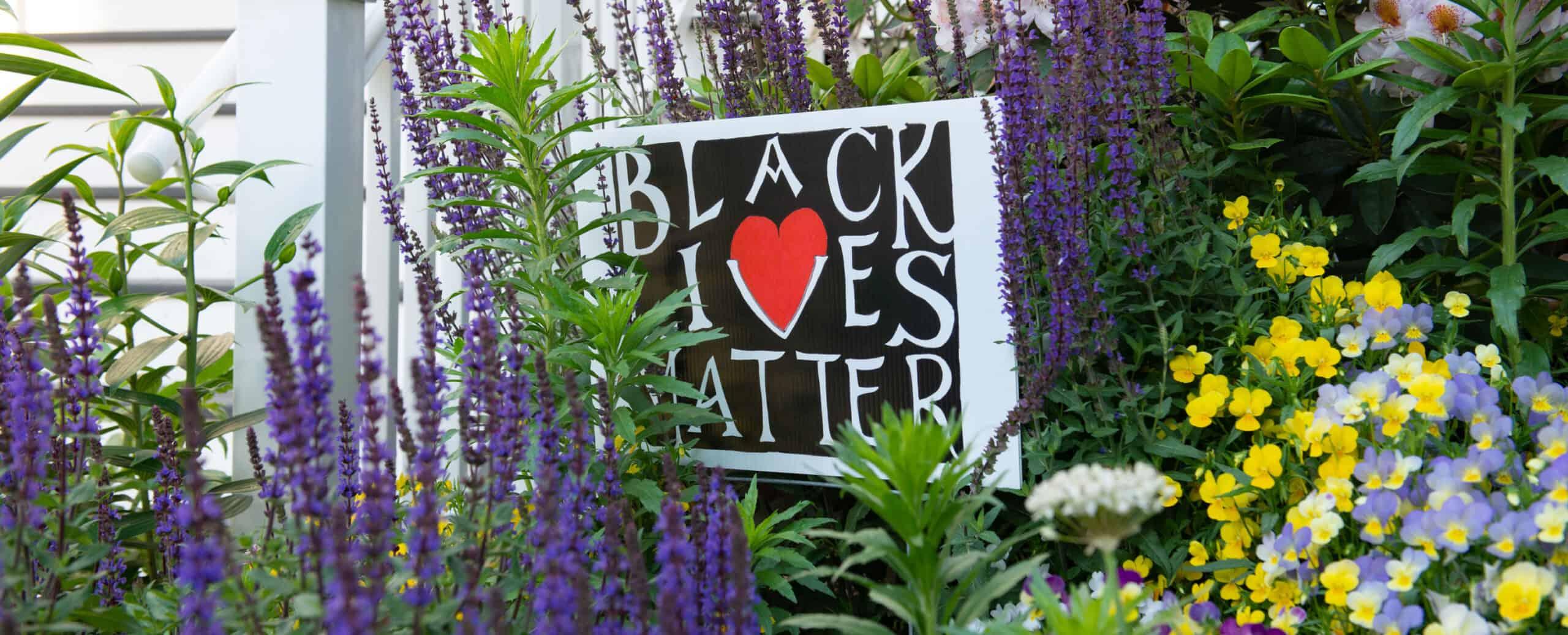 Black Lives Matter sign in Brookline